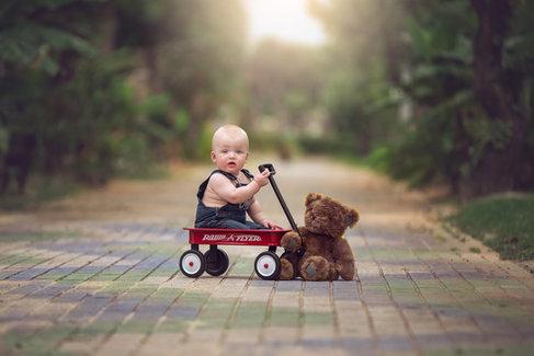 Baby boy in wagon on path with teddy bear