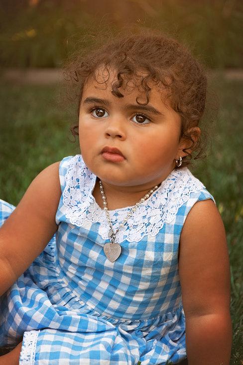 toddler girl in blue checkered dress fine art portrait