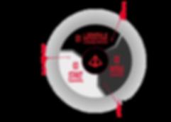 PEAKS Lifestyle Process Infographic
