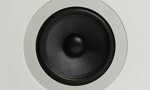 White speaker case with black cone