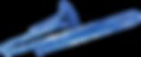 logo-bluetbn2.png