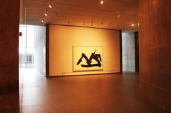 MoMA, Fort Worth - Photo Essay by Amit Khanna (21).JPG