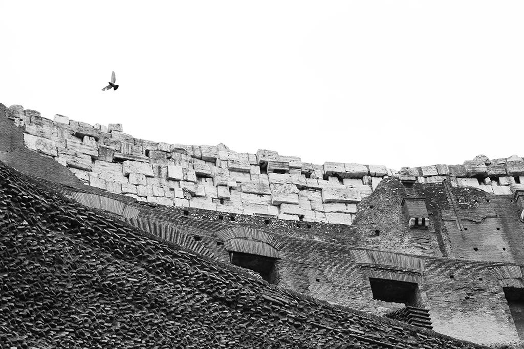 Colossuem, Rome - Photo Essay by Amit Khanna (10).JPG