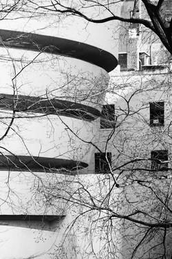 Guggenheim, NYC - Photo Essay by Amit Khanna (1).jpg