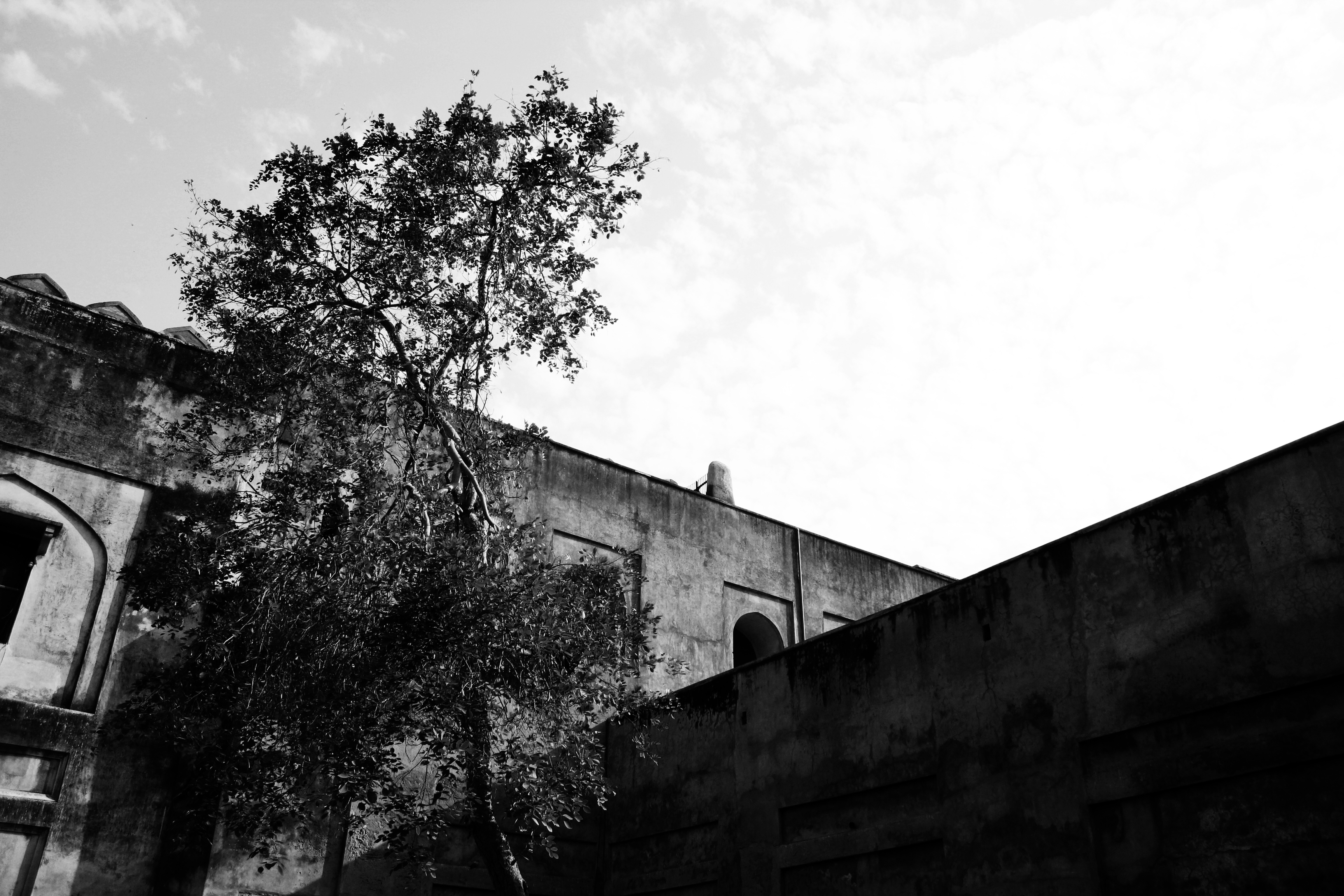 The Fort at Agra - Photo Essay by Amit Khanna (22).jpg