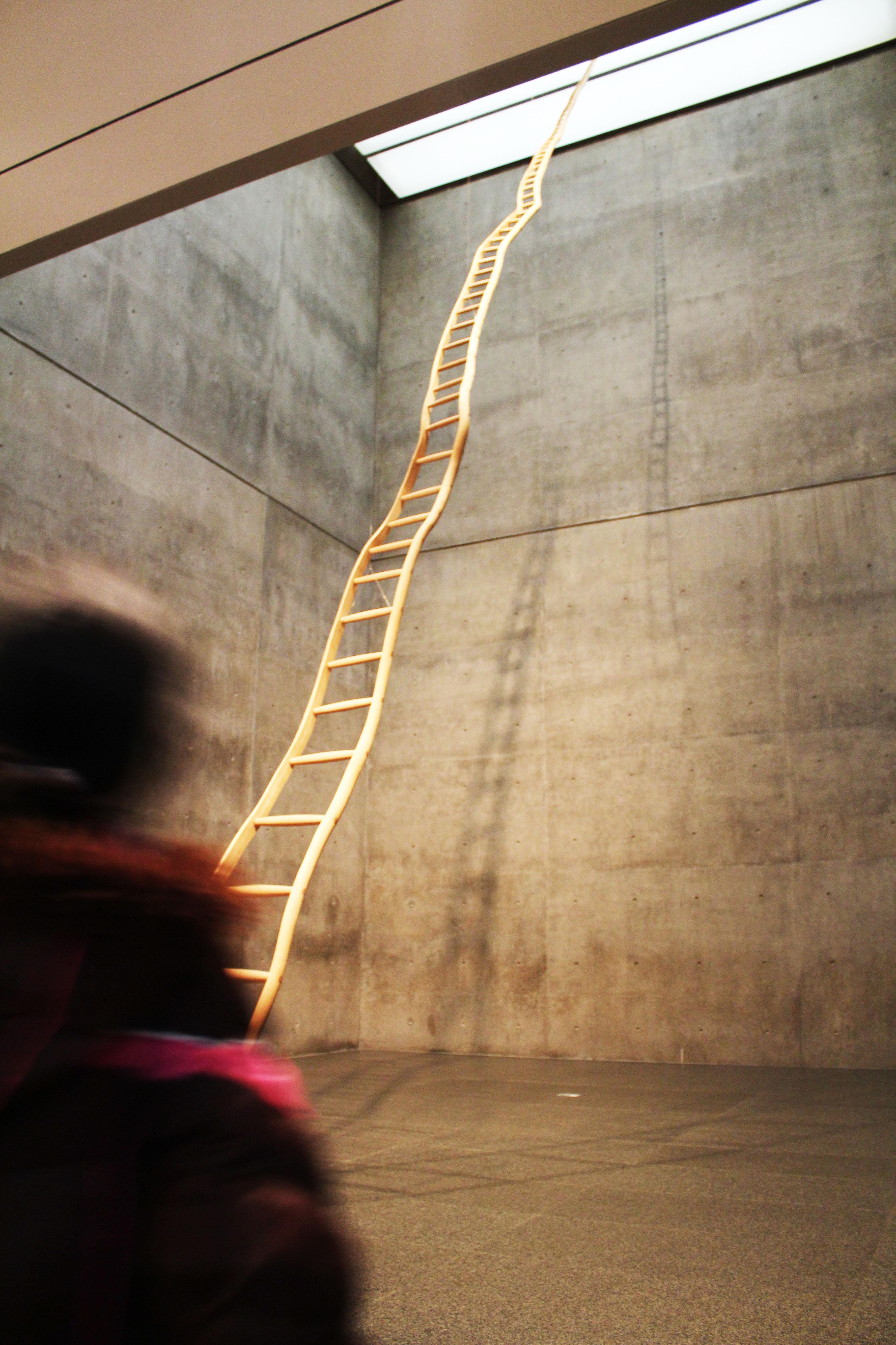 MoMA, Fort Worth - Photo Essay by Amit Khanna (9).JPG