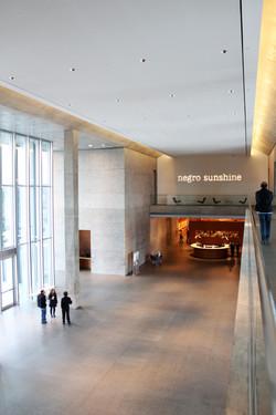MoMA, Fort Worth - Photo Essay by Amit Khanna (20).JPG
