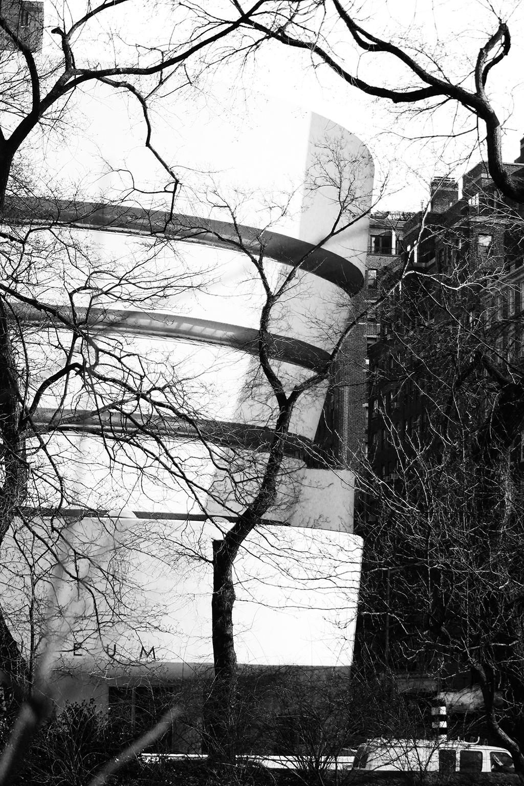 Guggenheim, NYC - Photo Essay by Amit Khanna (2).jpg