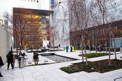 MoMA, NYC - Photo Essay by Amit Khanna (5).JPG