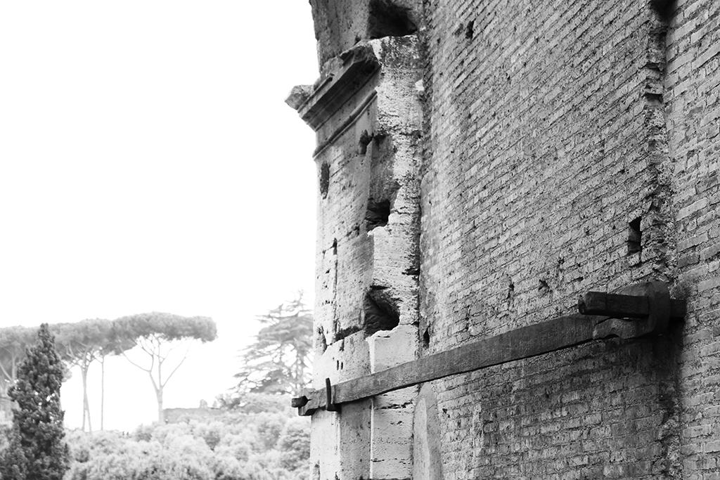 Colossuem, Rome - Photo Essay by Amit Khanna (16).JPG