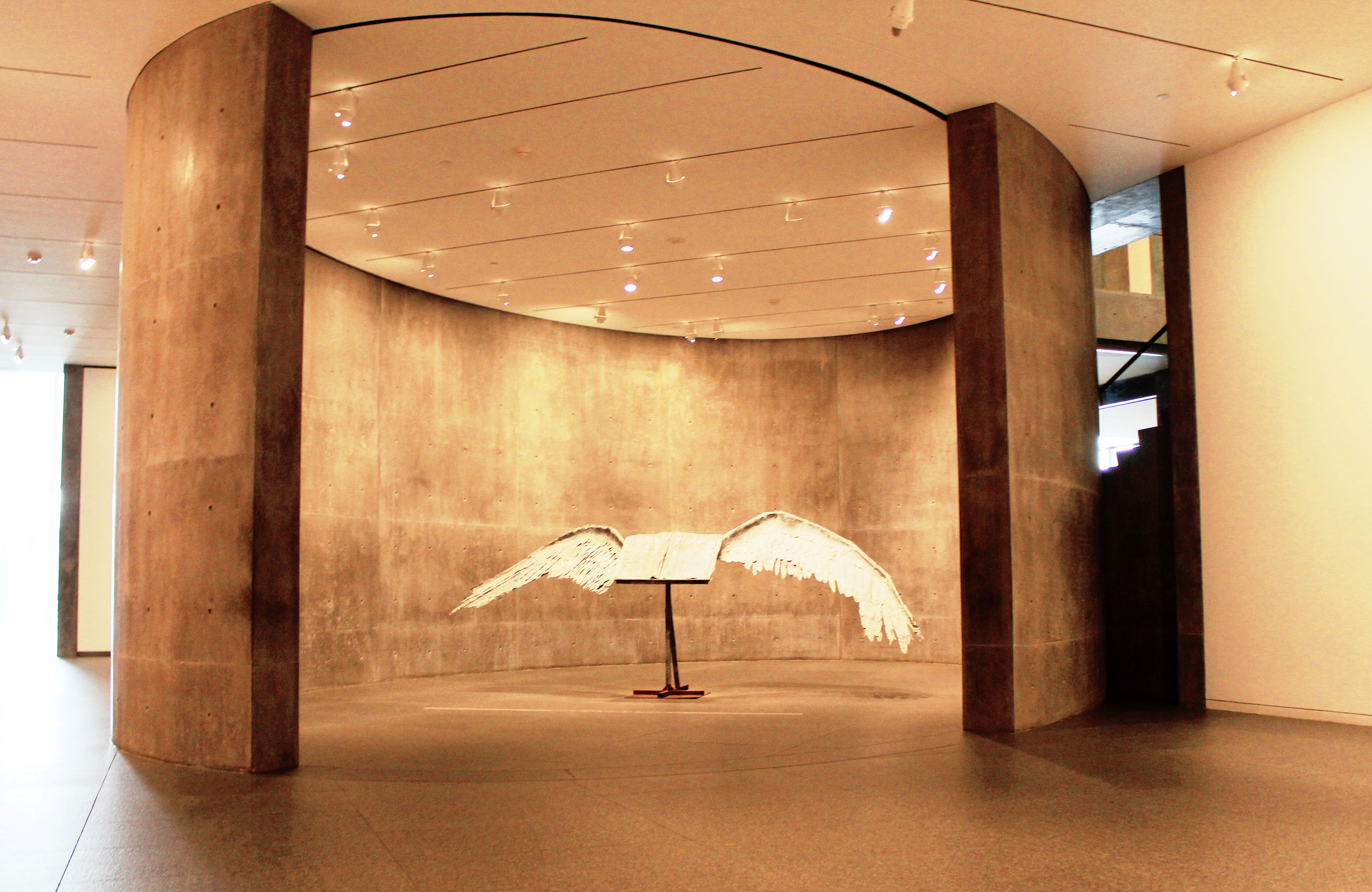MoMA, Fort Worth - Photo Essay by Amit Khanna (7).JPG