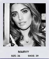 Marvy.png