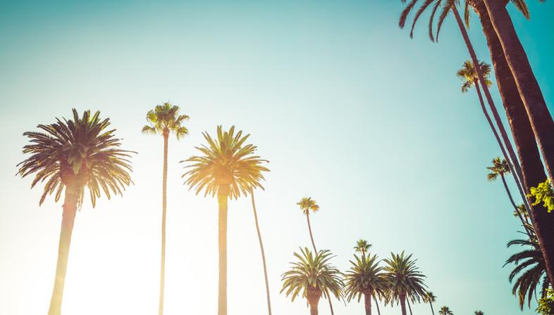 California-Beverly-Hills-Luxury-Lifestyle-855811522_3867x2579.jpeg
