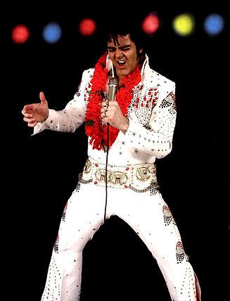 Paul Thorpe - Elvis.jpg
