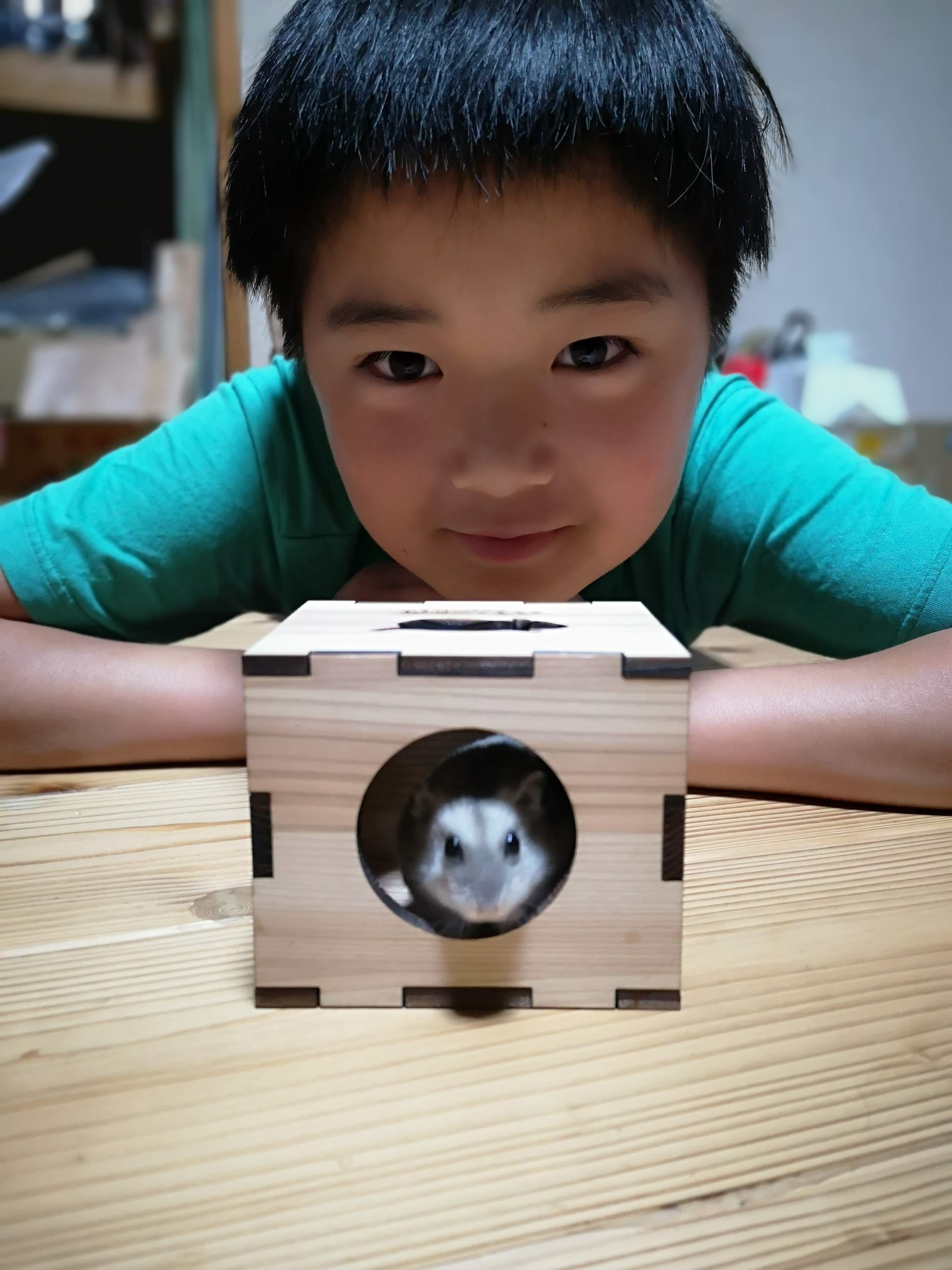 木の小箱(ハムスターのおうち)