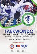 Affiche PUB Dragons Team Taekwondo  Rect
