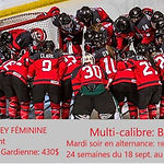hockey féminin, hockey adulte, hockey fille, ligue fille, tournoi féminin, débutante, hockey sur glace, tournoi, ligue, été, québec, montréal, laurenties, rive sud, rive nord, montréal, ligue garage fille, ligue amicale, hockey fille,apprendre hockey, aréna, glace