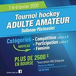 Tournoi amateur dolbeau mistassini 2020.