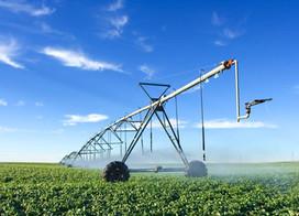 ¿Por qué la agricultura amenaza el equilibrio mundial de carbono?