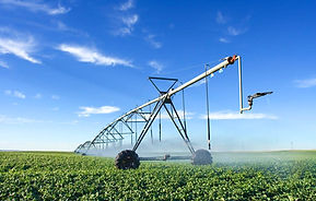Cadastro Ambiental Rural, Licenciamento ambiental agropecuário, Outorga, pecuária