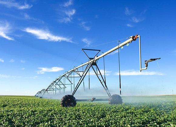 Ферма | подсобное хозяйство | КФХ | финансовая модель бизнес план