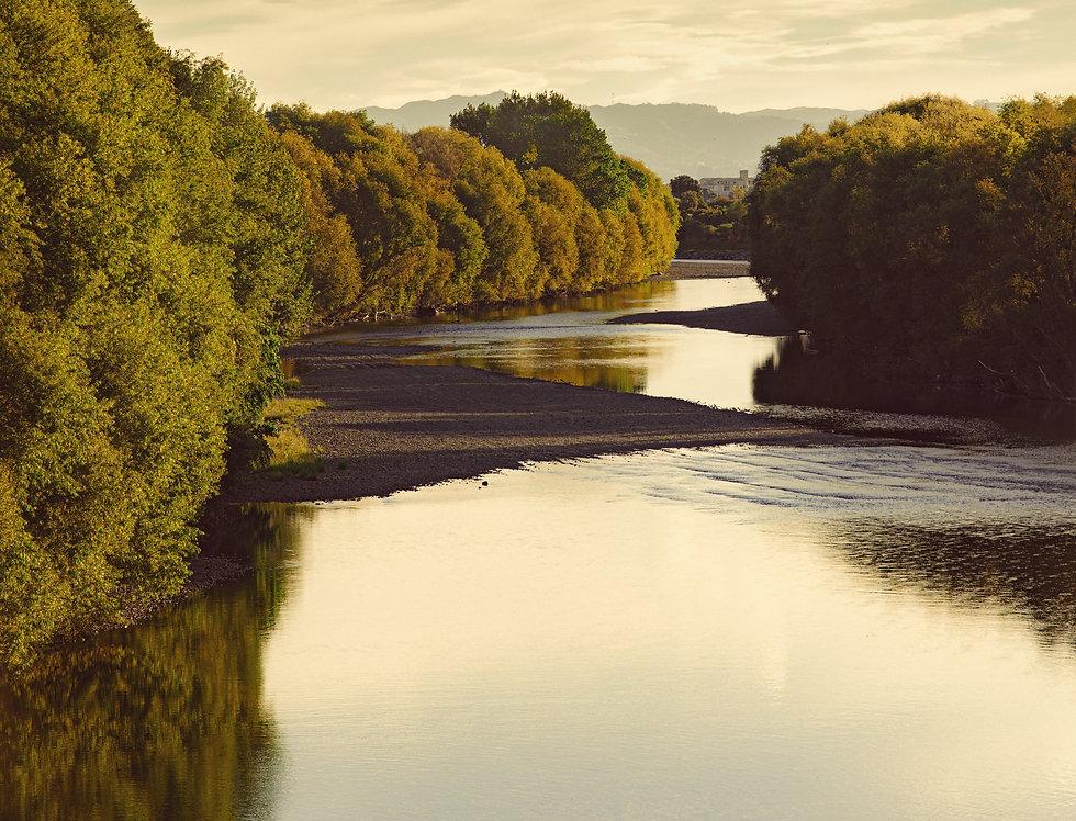Hutt River Golden Glow