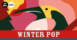 30_31_33_35. Winter Pop