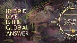 1. Hybrid Love is the global Answer