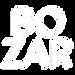 logo bozar white.png