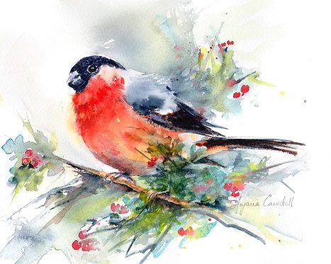Bullfinch painting, Original watercolour, Watercolor, british wildlife