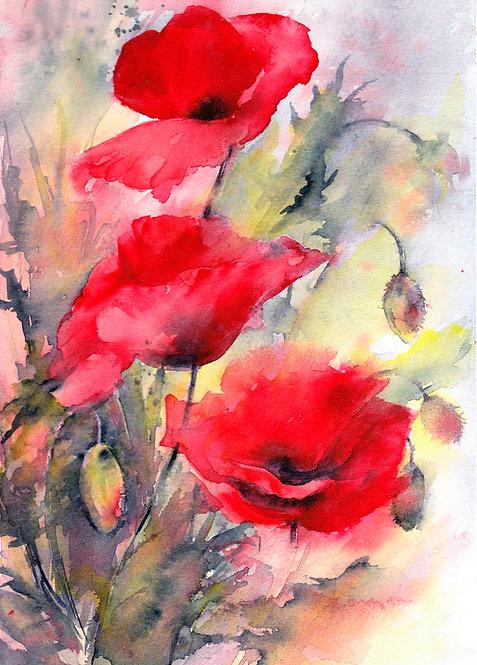 Poppy Blank Greetings Card