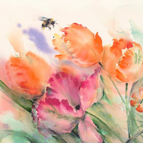 Bumblebee on Tulip