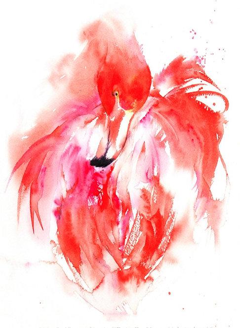 Flamingo Print, Open Edition Giclée Print