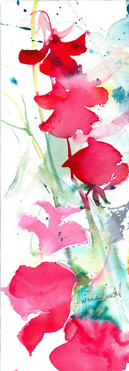 Sweetpea Abstract (Framed)