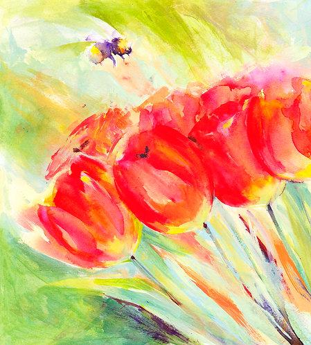 Tulips and Bumbebee