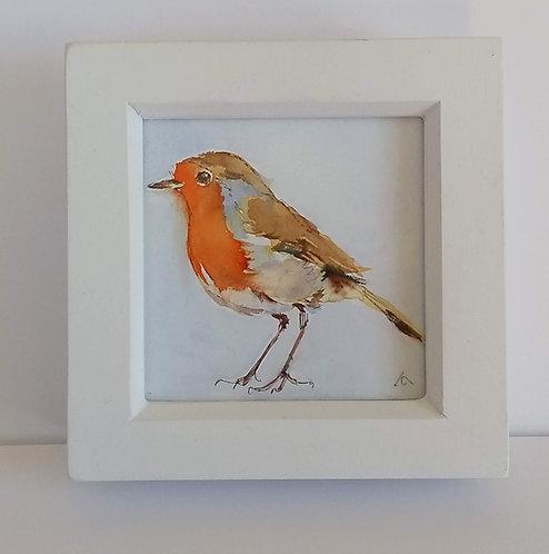 Robin in a box frame