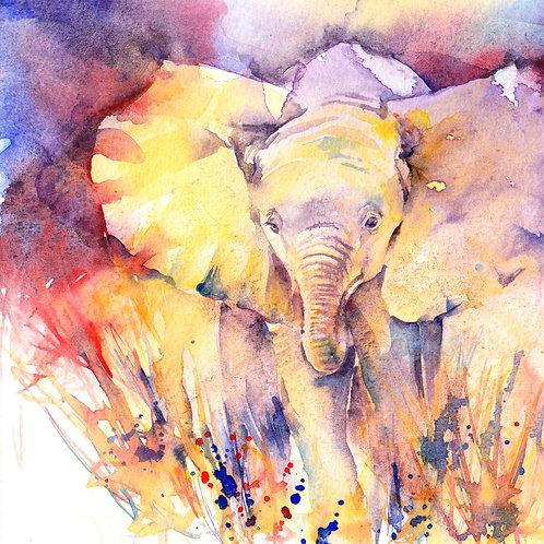 Baby elephant original watercolour painting