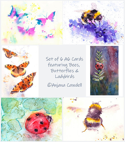 Set of 6 A6 Greetings Cards - Critters