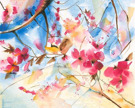 Cherry Blossom, Open Edition Giclée Print
