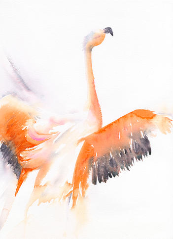 Feathery Flourish