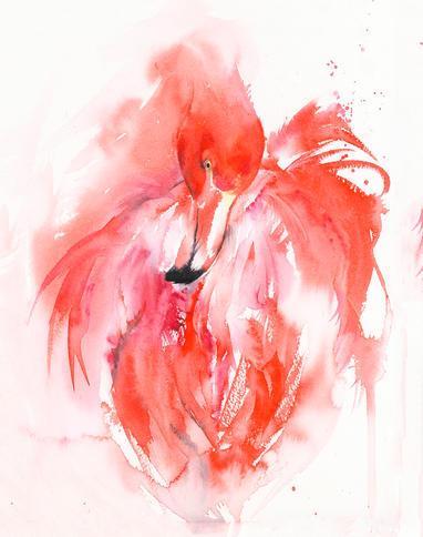 Flamingo Flurry