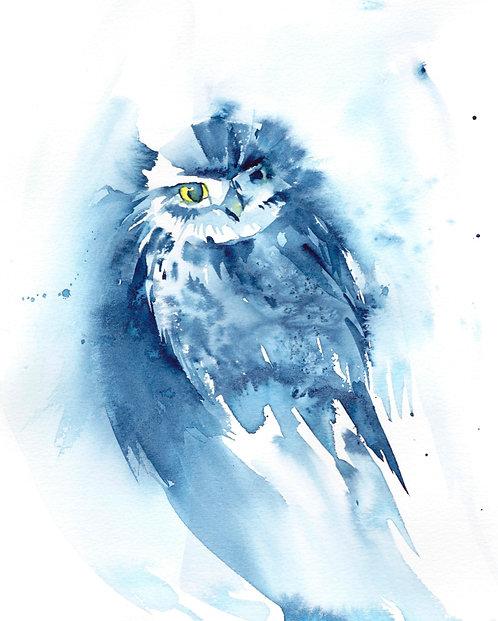 Little Owl, Framed Original Watercolur Painting