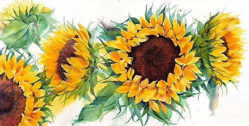 Bold Sunflower Painting, original watercolour