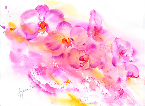 Cascading orchid
