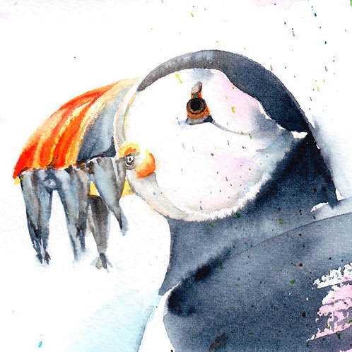 Puffin with sand eels, Original Watercolour Painting