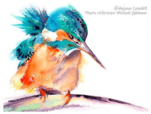 Kingfisher, Open Edition Giclée Print