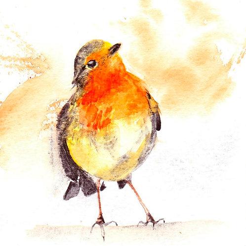 Robin (Framed)
