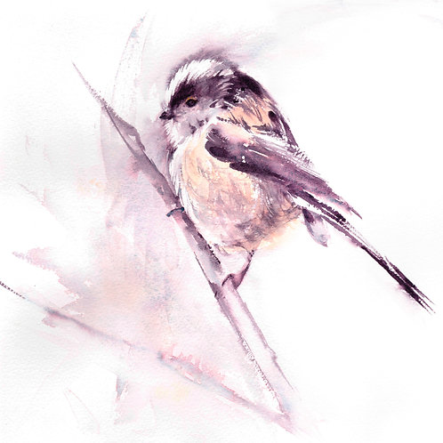 Long Tailed Tit, Open Edition Giclée Print
