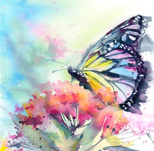 Rainbow Monarch Butterfly
