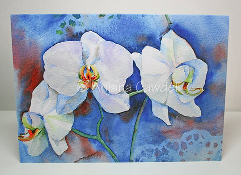 Set of 6 Orchid Cards, A6 Blank Greetings cards, Floral cards